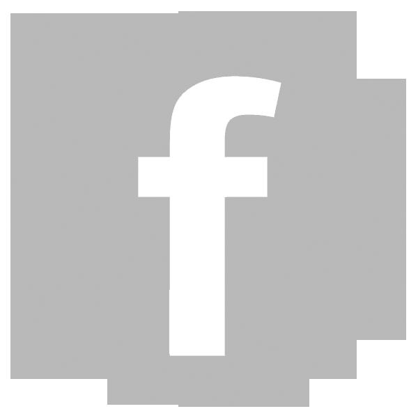 Risultati immagini per logo fb grigio